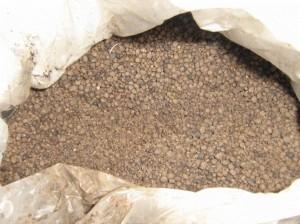 Zeolite1